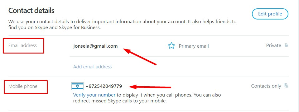 Check Profile Details - Skype account hacked
